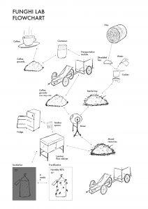 funghi-lab-flowchart